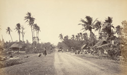 Road scene in Bengal
